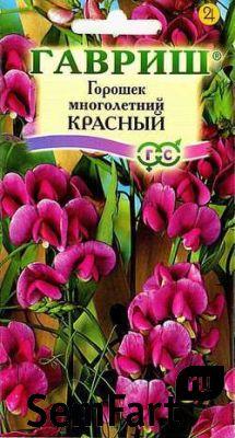 Многолетние цветы купить цветы vip